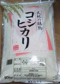 koshihikari1.jpg